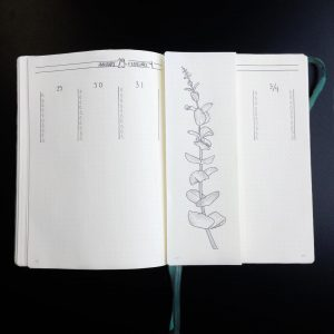 The Dutch Door Dilemma Bullet Journal