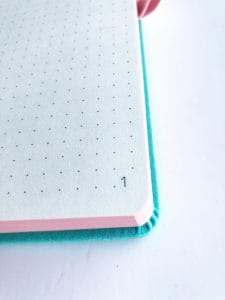 Lemome Bullet Journal Review
