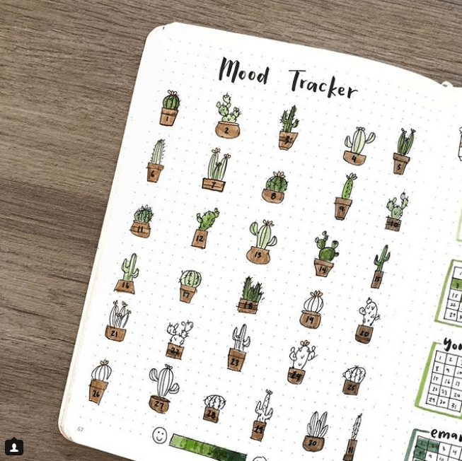 incredible cactus spreads for May