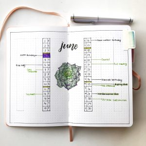 review archer and olive grid journal