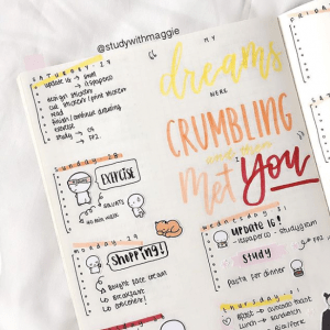 stunning orange bullet journal spreads