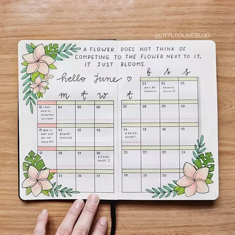 tropical inspired bullet journal spreads