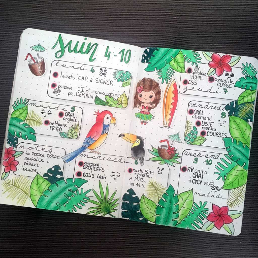 33 Tropical Inspired Bullet Journal Spreads My Inner Creative Access exclusive content on the intentional social network for all things bullet journal. 33 tropical inspired bullet journal