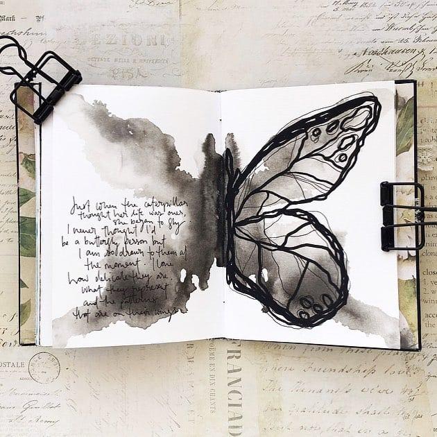 Butterfly's